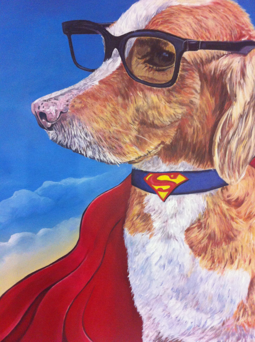 Smarty the Super Dog